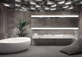 bathroom lighting mirror. Saratoga Springs-based Teakwood Builders Bathroom Lighting Design Idea Book: LED 6000K Daylight Color Mirror L