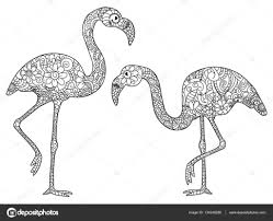 Twee Flamingos Vector Kleurplaten Voor Volwassenen Stockvector
