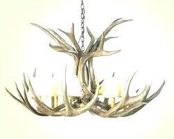 antler ceiling light fixture deer lights uk how to make chandeliers an chandelier lighting delectable