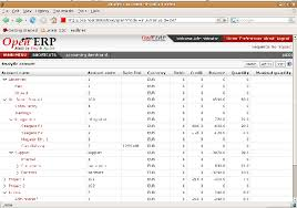 Chart Of Accounts For Manufacturing Company Putting Analytic Accounts In Place