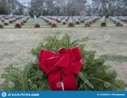 Cemetery Christmas Tree With Lights Detailed View Of A Wreath That Has Been Placed On All Graves