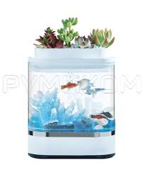 Купить Аква-ферма <b>Xiaomi</b> Descriptive Geometry Mini <b>Lazy</b> Fish ...