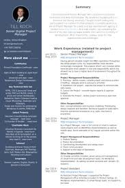 senior project manager resume samples examples of project manager resumes