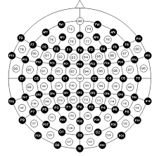Tdcs Electrode Placement Montage Guide Total Tdcs