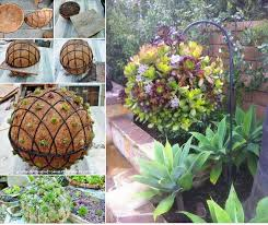 Gorgeous Gardening - Create Your Own Hanging Succulent Ball ...