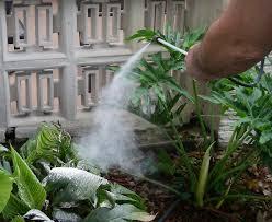garden duster. KD-1 Pesticide \u0026 Garden Duster For Diatomaceous Earth Powder (food Grade) Delta Dust Application - YouTube T