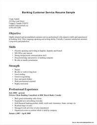 Monster Resume Writing Services Reviews Resume Resume Monster Resume