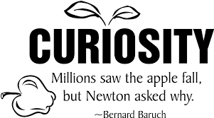Curiosity Quotes Gorgeous 48 Curiosity Quotes 48 QuotePrism