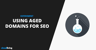experiment using powerful aged domains for seo
