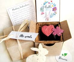 Biodegradable Paper With Flower Seeds 4 Hello Spring Seed Paper Bunny Boxes With Plantable Pots Peter Rabbit Birthday Ecofriendly Easter Basket Gift