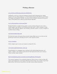 Effective Resume Template Sample Resume For English Teachers Doc Valid College Resume Template