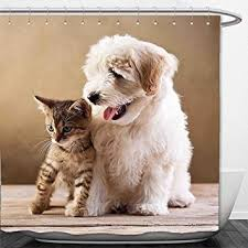 cute puppy and kitten best friends.  Cute Interestlee Shower Curtain Animal Cute Baby Cat Kitten And Puppy Dog Best  Friends Image Photo Artwork In And