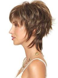 Hair Style Shag pretty shag hairstyle to impress everybody 23 shag hairstyles 3268 by wearticles.com