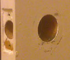 door with door hole