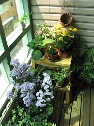 Terrace and Garden: Beautiful Indoor Garden Ideas - Apartment Gardens