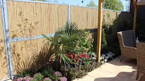 Bamboo Fencing - Things To Consider At The Time Of Buying