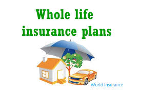 Significance Of The Whole Life Insurance LifeInsurance Quotes Delectable Quotes For Whole Life Insurance