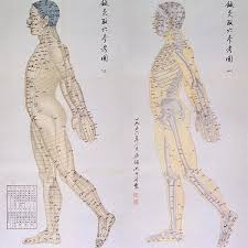 Acupuncture Chart Poster Chinese Chart Of Acupuncture Points Poster