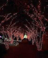 garden lights atlanta garden lights holiday nights at botanical garden garden lights atlanta