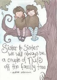Cute Sister Quotes 1 Inspiration Funny Sister Poems
