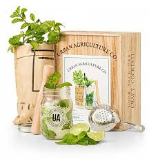 mint mojito l kit you can get additional dels at the image link