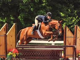 jessica choper brings over 25 years experience to leone equestrian law
