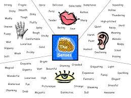 descriptive essay five senses descriptive essay five senses