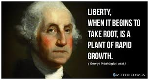 Quotes About George Washington Impressive George Washington Said Quotes 48 Motto Cosmos