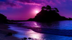 Purple Beauty Oceans Nature Background Wallpapers On