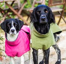 Freckles Designs Dog Coats Drying Coats Worth Every Penny Dynamic Dogs