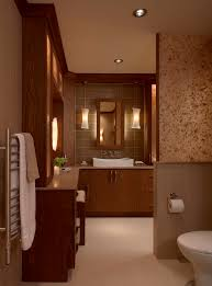 in shower lighting. doorless walk in shower bathroom contemporary with cabinetry ceiling lighting door image by xstyles bath more