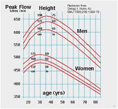 Peak Flow Metre Chart Peak Flow Meter Reading Chart Www Bedowntowndaytona Com