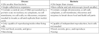 Bacteria And Viruses Venn Diagram Bacteria Vs Virus Venn Diagram Atlas Opencertificates Co