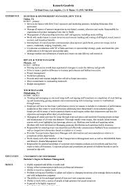 Sample Travel Management Resume Tour Manager Resume Samples Velvet Jobs