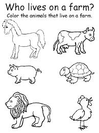 Animal worksheets for