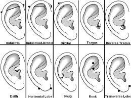 All Ear Piercings Chart Piercings