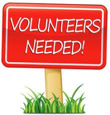 Image result for kid volunteers