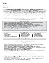 Security Resume Sample Delectable It Security Resume Sample Information Manager Mmventuresco