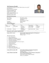 curriculum vitae university lecturer updated