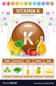 Foods High In Vitamin K Chart Vitamin K Supplement Food Icons Healthy Eating Vector Image