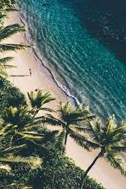 Tropical Wallpaper Tumblr - 1280x1920 ...