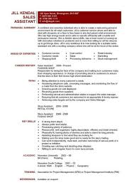 Marketing And Sales Assistant Sample Resume