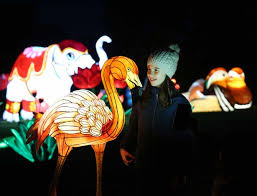 nina kiernan pictured at the announcement of wild lights image leon farrell