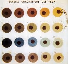 Eye Color Chart File Broca Eye Color Chart Jpg Wikimedia Commons