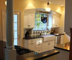 To Remodel A Kitchen How To Remodel My Kitchen Luxurious Mikegusscom