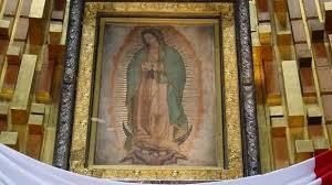 Día de la Virgen de Guadalupe: historia, milagros y datos curiosos de la  patrona de América | Notife