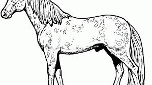 Awful Horse Coloring Pictures Pages For Preschoolers Unique Get This