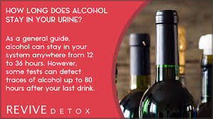 How Long Does Alcohol Stay In Your Urine The Truth
