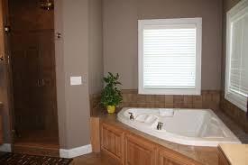 jacuzzi bathtub and shower