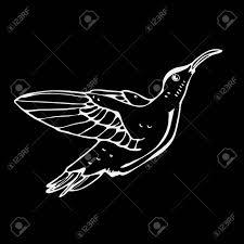 手描きの鉛筆のグラフィックコリブリ鳥彫刻ステンシル スタイルです黒と白のロゴ記号紋章記